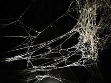 Web Of Spider In Urban Art