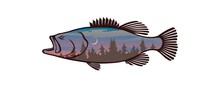 Bass Fish Icons