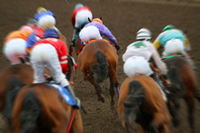 Horse Racing Action From Behind