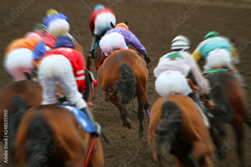 Stampa su Tela Horse racing action from behind