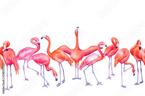 wzor-z-egzotycznym-tropikalnym-rozowym-flamingo-ptakiem-w-kolorze-plomienia-w-roznych-pozach-recznie-rysowane-akwarela-malarstwo