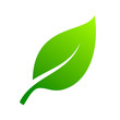 Leaf green icon. Ecology logo. Vector
