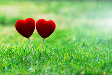 Two Red Heart On Green Grass For Love Valentine's Day Background Concept