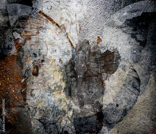 Canvas Prints Butterflies in Grunge a grunge butterfly design wallpaper