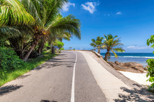 Road Trip. Beach Palms Road In Paradise Island, Mahe, Seychelles