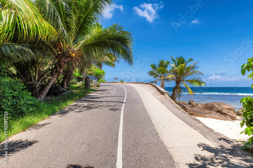 Foto auf AluDibond Dunkelgrau Road trip. Beach palms road in paradise island, Mahe, Seychelles