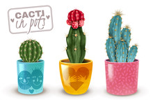 Cactus Pot Set