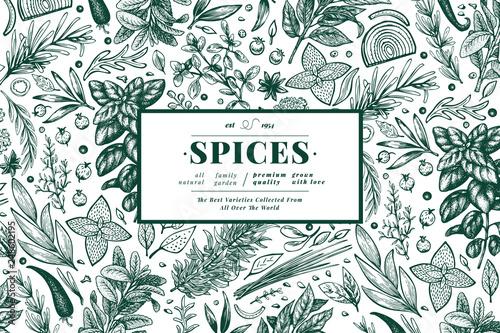 Culinary herbs and spices banner template Slika na platnu