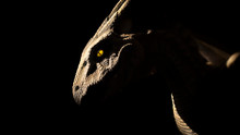 Dragon In Silhouette With Glowing Yellow Eye And Scales In Relief.