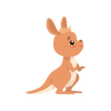 Cute Baby Kangaroo, Brown Wallaby Australian Animal Character Vector Illustration