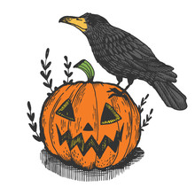 Crow Bird And Halloween Pumpki...