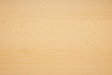 Beechwood Or Beech Wood Backgr...