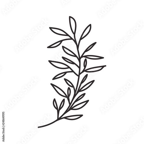 branch with leaf isolated icon Wall mural