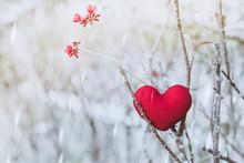 A Little Red Heart Pillow On D...
