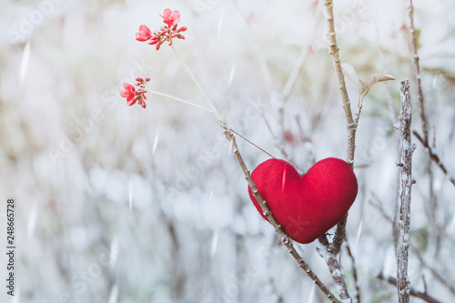 Obraz A little red heart pillow on dry tree. - fototapety do salonu