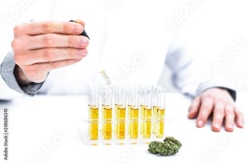 Photo  Gewinnung von medizinischen Cannabis Öl im Labor