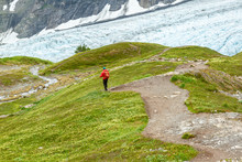 Hiker In A Red Jacket Hiking On A Green Hill On The Harding Icefield Trail Overlooking Exit Glacier, Alaska, USA. Hiker Is Wearing A Backpack And A Red Jacket. Ample Copy Space. Glacier In Background.