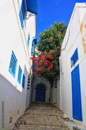 Obraz na płótnie Tunezja