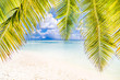 Perfect beach vacation banner. Summer landscape with palm leaf and blue sea, exotic travel destination. Wonderful scenery background design