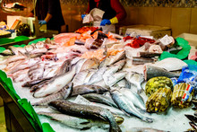 Fresh Fish Are On The Counter In The Fish Shop
