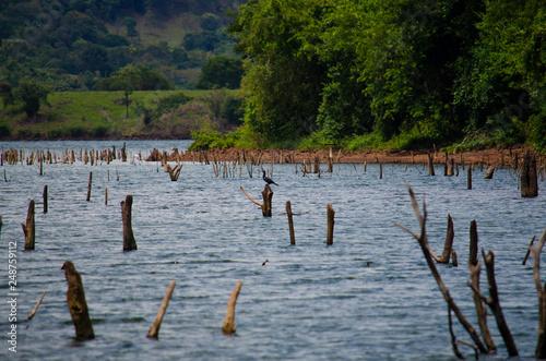 Fotografia  lago