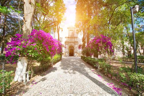 Fototapety, obrazy: Atrium of Olives (Atrio de los Olivos) park in front of Francisco Javier Church in Tepotzotlan