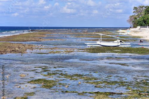 Fotografia  Seaweed farms at low tide in Nusa Penida Island, Indonesia, Asia