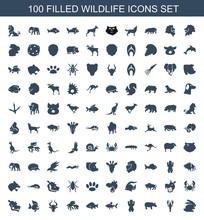 100 Wildlife Icons