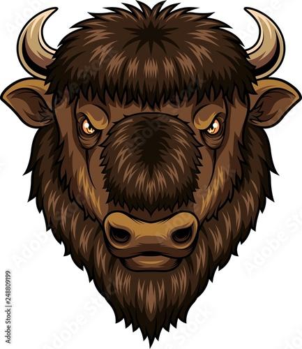 Bison Head Mascot Acheter Ce Vecteur Libre De Droit Et