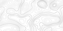 Topographic Map And Landscape Terrain Texture Grid. Abstract White Topography Vector Background