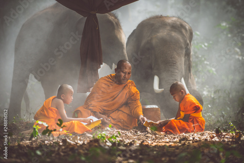 Fotografia Thai monks studying in the jungle with elephants