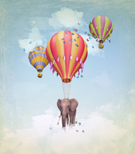 Flying Elephant In The Sky Wit...