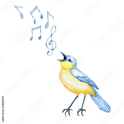 Stampa su Tela hand-drawn watercolor songbird