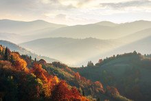 Beautiful Autumn Landscape In ...