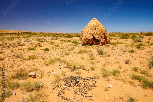 Staande foto Bleke violet termite mounds in the desert of western australia 2