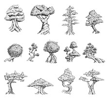 Set Of Hand Drawn Sketch Old Tree Or Decorative Japan Bonsai Tree Isolated On White Background. Vector Vintage Retro Illustration.