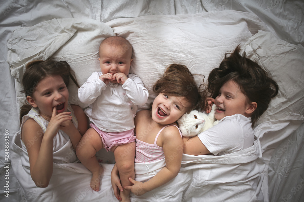Fototapety, obrazy: Children and cat on bright bed, top view. Baby cry