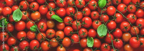 Fotografía  Cherry Tomaten hintergrund panoramma