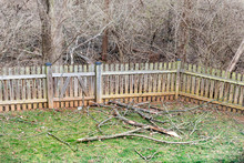 Home Backyard Wooden Fence With Many Fallen Tree Branches After Winter Windy Storm Hurricane On Grass With Bare Wood Outside And Nobody Closeup