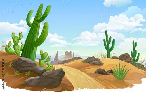 Foto auf Gartenposter Himmelblau Rocks, Saguaro and cactus infested desert region. A sandy road across desert vegetation.