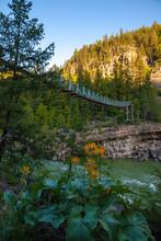 Kootenai Falls Suspension Bridge Ove The Kootenay River Near Libby Montana, USA