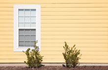 One Solitary Window On The Exterior Of A House With Bright Yellow Siding.