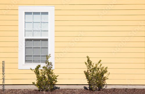 One solitary window on the exterior of a house with bright yellow siding Canvas Print
