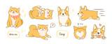 Fototapeta Fototapety na ścianę do pokoju dziecięcego - Kawaii playful Corgi and Shiba Inu dogs in various poses. Hand drawn colored vector set. All elements are isolated