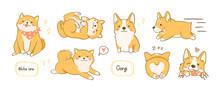 Kawaii Playful Corgi And Shiba...