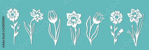 Fotografie, Obraz  A set of flowers for decoration