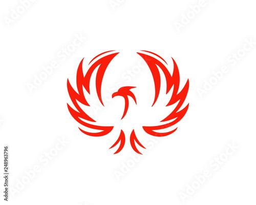 Photo  phoenix