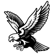 American Bald Eagle With Open Wings And Claws In Black And White
