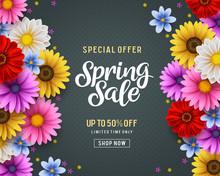 Spring Special Offer Vector Ba...