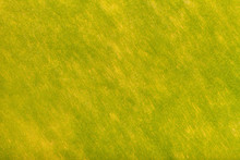 Bright Green And Yellow Background Of Felt Fabric. Texture Of Woolen Textile
